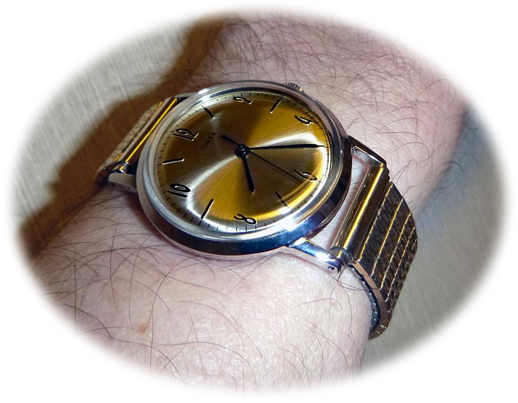 Timex%20Marlin%202017%20Speidel%202.jpg