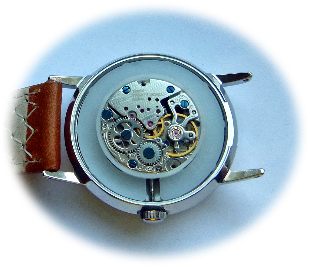 Timex-Seagull-ST6.jpg